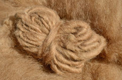 Sheep's wool Stock Photography