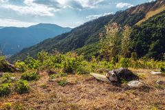Sheep scull lying on the ground with mountain landscape behind stock photo