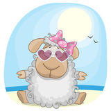 Sheep on the sea Royalty Free Stock Photos