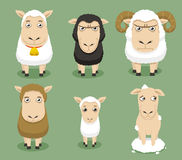 Sheep set Stock Photography