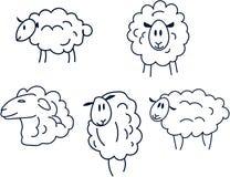 Sheep set Stock Photos
