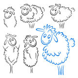 Sheep set Stock Image