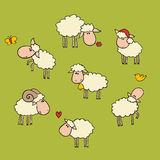 Sheep set. Vector drawn sheep set. with ships on it Royalty Free Stock Image