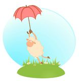 Sheep Sheep Flies On An Umbrella Royalty Free Stock Photography