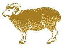 Sheep side view-golden color Stock Photos