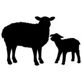 Sheep Silhouette. A vector illustration of Sheep Stock Images