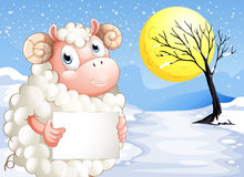 A sheep in the snow with an empty signage Royalty Free Stock Image