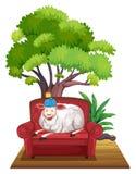 Sheep on sofa Royalty Free Stock Photo