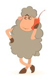 Sheep speaks by phone Royalty Free Stock Image