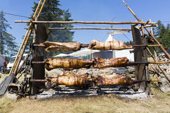 Sheep on spits roasting Royalty Free Stock Photos