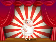 A sheep at the stage holding an empty signage Stock Images