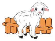 Sheep stand near the fence. Lamb stand near the wooden brown fence Stock Photography