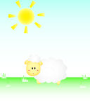 Sheep In The Sun Royalty Free Stock Image