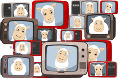 Sheep on Television screens. Sheep in Television  illustration cartoon Royalty Free Stock Photography