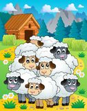Sheep theme image 4 Stock Photos