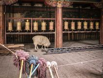 Sheep in tibetan Monastary. A sheep is looking for food unter the prayer mills in a tibetan monastery, in the forefront there are some brooms aligned to dry Stock Photo