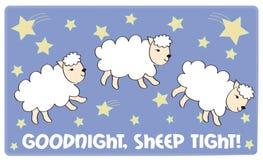 Sheep Tight Royalty Free Stock Photography