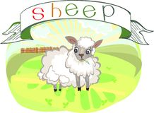 Sheep with title Royalty Free Stock Images
