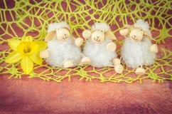 Sheep toy decoration Stock Photo