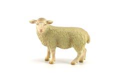 Sheep toy isolated on white Stock Image