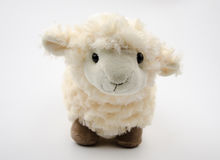 Sheep toy  on a white background Stock Photos