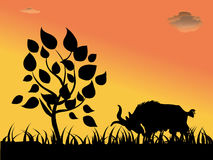 Sheep and tree. Silhouette Vector Illustration of Sheep and tree Royalty Free Stock Photos