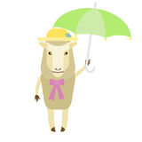 Sheep with umbrella Stock Photos