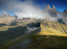 Sheep under three peaks Aiguilles d'Arves in French Alps, France. Aiguilles d'Arves, Grandes Rousses, Dauphine Alps, France Royalty Free Stock Photography