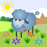 Sheep, vector. Sheep Cartoon Character Eating A Flower On A Meadow Royalty Free Stock Image