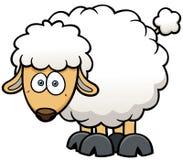 Sheep. Vector illustration of a cartoon sheep Stock Images