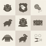 Sheep vector set. Flat illustration new modern style Stock Photography