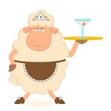 Sheep - waiter brings a martini Stock Images