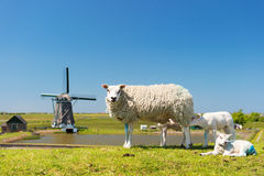 Sheep and windmill at Dutch island Texel Royalty Free Stock Image