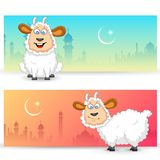 Sheep wishing Eid mubarak Royalty Free Stock Photo
