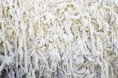 Sheep wool knotted Stock Photos