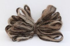 Sheep Wool Roving Royalty Free Stock Images