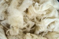 Sheep wool, wool pictures, make quilts and pillows with natural wool,.  Stock Images