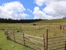 Sheepfold im Berg stock footage