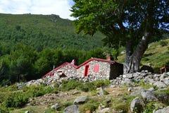 Sheepfold - Korsika Lizenzfreie Stockfotos