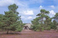 Sheepfold Lueneburg hed, lägre Sachsen, Tyskland Arkivbild