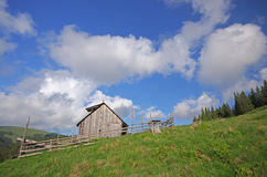 Sheepfold on a meadow Stock Images
