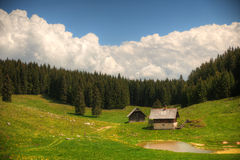 Sheepherd cottages on Pokljuka Plateau in Slovenia central Europe Stock Images