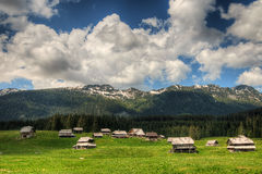 Sheepherd cottages on Pokljuka Plateau in Slovenia central Europe Royalty Free Stock Photos