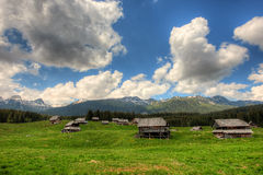 Sheepherd cottages on Pokljuka Plateau in Slovenia central Europe Royalty Free Stock Photo