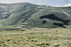 Sheepherder alpino - mapa de Itália foto de stock royalty free