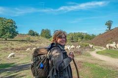 Sheepherder gromadzi się jej cakle przy Veluwe parkiem narodowym 9-2018 obraz royalty free