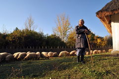 Sheepherder portrait at October 27, 2009 in Skanzen, Hungary Stock Photo