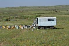 Sheepherder ule i furgon Zbliżamy Mt Aragats, Armenia zdjęcia royalty free