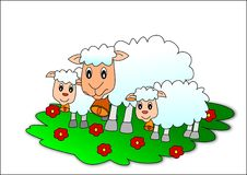 Sheeps. Sheep animal domestic green easter flower Stock Photography