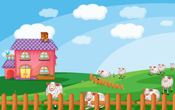 Sheeps. Illustration of sheeps in nature Stock Images
